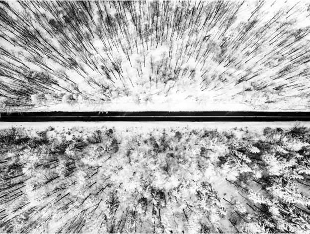 Winter by Tomasz Walczack