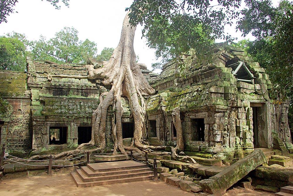 Ta Promh Temple