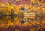 Thumbnail : 31 Inspirational Photo Ideas For October 2014