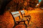 Thumbnail : 5 Themes You Need To Have On Your Autumn Photography Checklist
