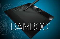 Wacom Bamboo pen