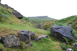 Nikon D40x Landscape image