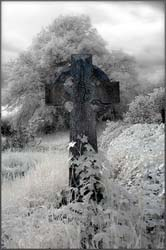 Infrared photograph of a grave stone