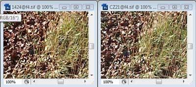 Nikon 14-24mm f/4 & Carl Zeiss 21mm f4 Zone A resolution