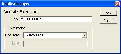 Duplicate Layer settings