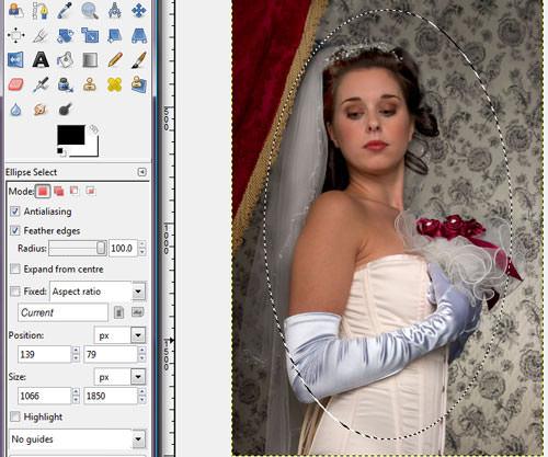 using gimpt to create a high key vignette