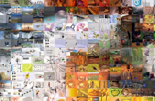 Creating mosaic photos