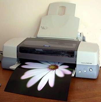 Epson Stylus Photo 1290 Printer Drivers