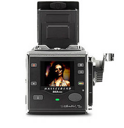 Hasselblad 503CWD - free 40mm lens