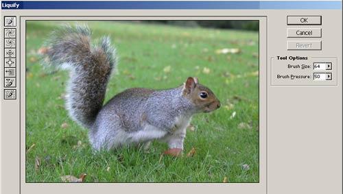 Photoshop Elements Liquify Tool technique