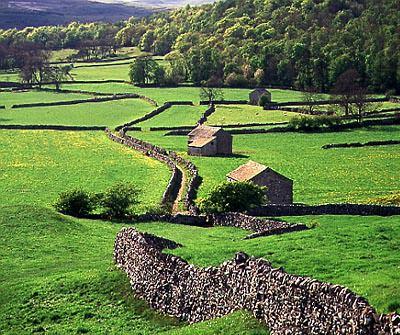 Barns and Walls near Grassing ton North Yorkshire