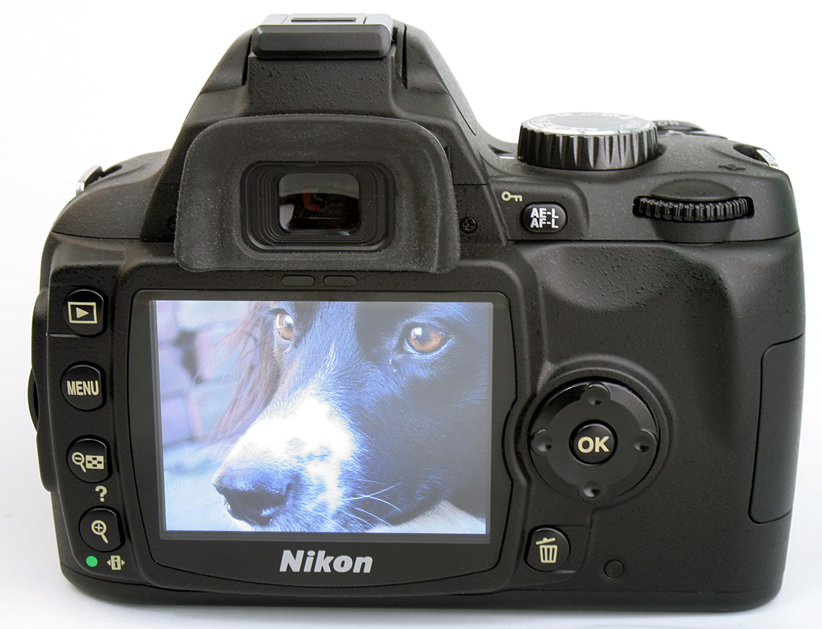 Nikon D60 Digital SLR Review