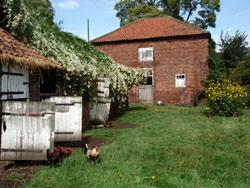 Olympus mju 780 farm