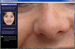 define the nose