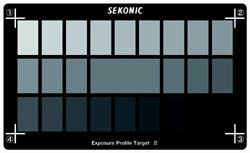 Exposure Profile Target II