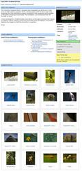 ePHOTOzine members' exhibitions