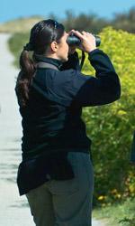 Using the binoculars