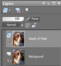Layers tab in Paint Shop Pro X2 for the depth of field technique