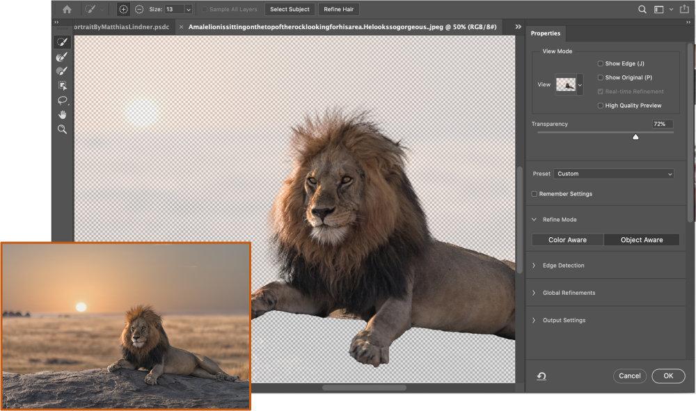 Photoshop Intelligent Refine Edge 1 |