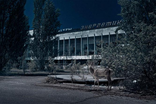 Chernobyl project by Adam Orzechowski