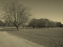 Iphoto Effect Sepia