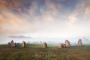 Thumbnail : Atmospheric Stone Circle Image Awarded POTW