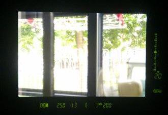 Canon EOS 1D Mk IV Viewfinder