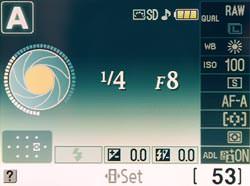 Nikon D3000 screen
