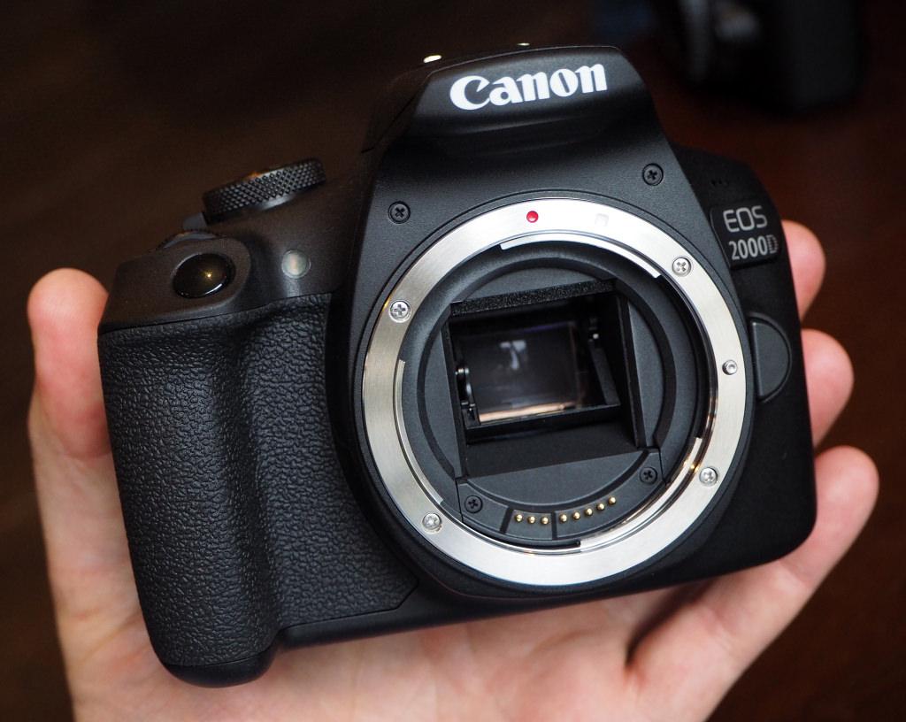 CANON EOS 4000D + EF-S 18-55 F3.5-5.6 III: teste e opinião