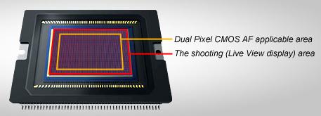 Canon Dual Pixel AF