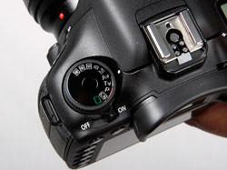 Canon EOS 7D detail shot