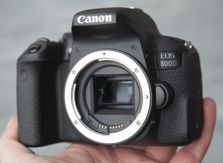 Canon EOS 800D Sample Photos   ePHOTOzine