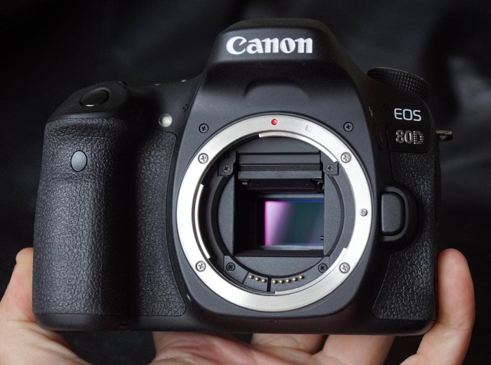 Canon EOS 80D (10)