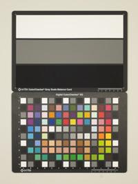 Canon IXUS 115 HS ISO400