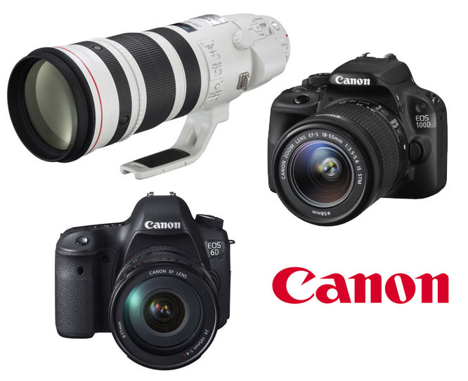Canon 100D, 6D and 200-400mm lens