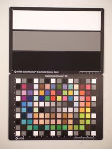 Casio Exilim ZS5 ISO100