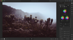 Colour Grading In Lightroom And Photoshop - Which Does It Better?