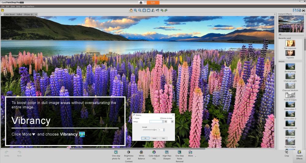 PaintShop Pro 2020 Photography Workspace