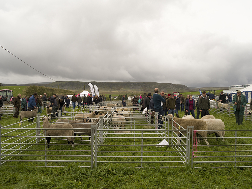 Langdon Beck Show. © Richard Glynn.