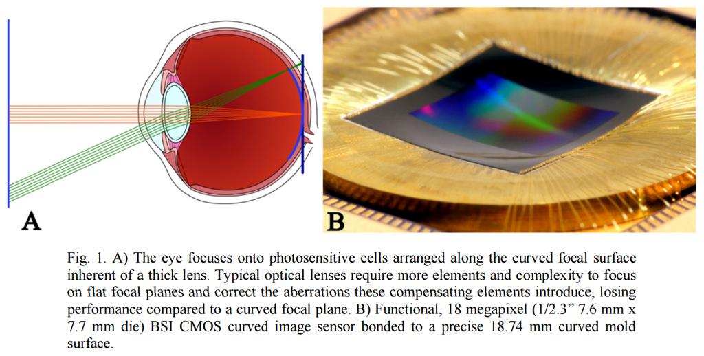 Microsoft Curved Sensor Technology