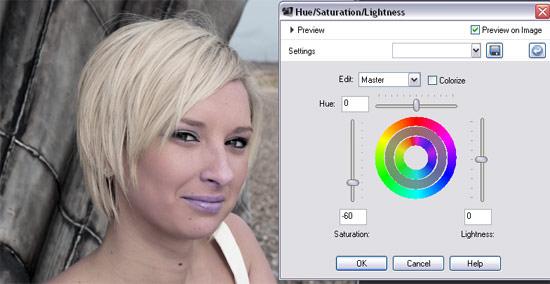Corel Paint Shop Pro X3 desaturate step 1