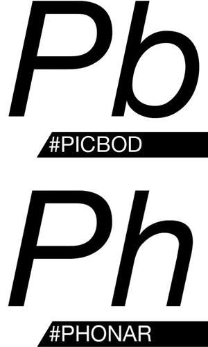 Picbob