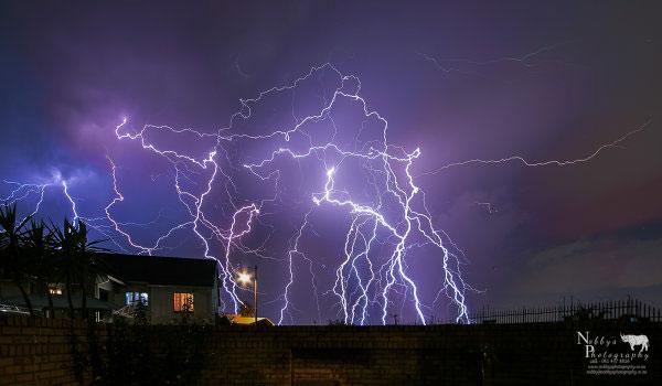Nobby 31 lightning
