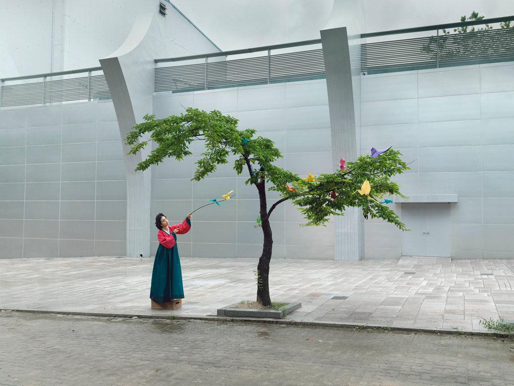 Korea Ikebana