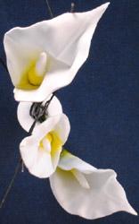 Flowers - By Daniel Bell