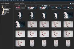 Corel Paintshop Photo Pro X3 tutorial