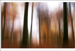 Autumn Abstracts