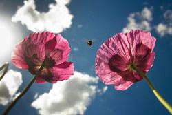 Five Ways To Make Mundane Shots More Interesting