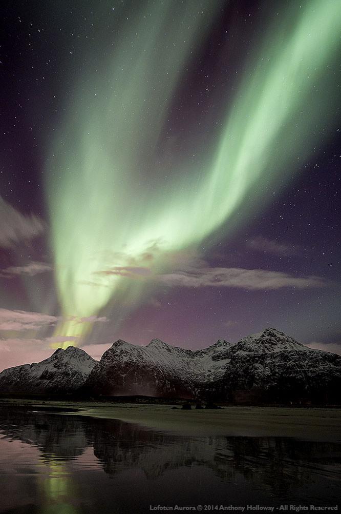 Lofoten Aurora