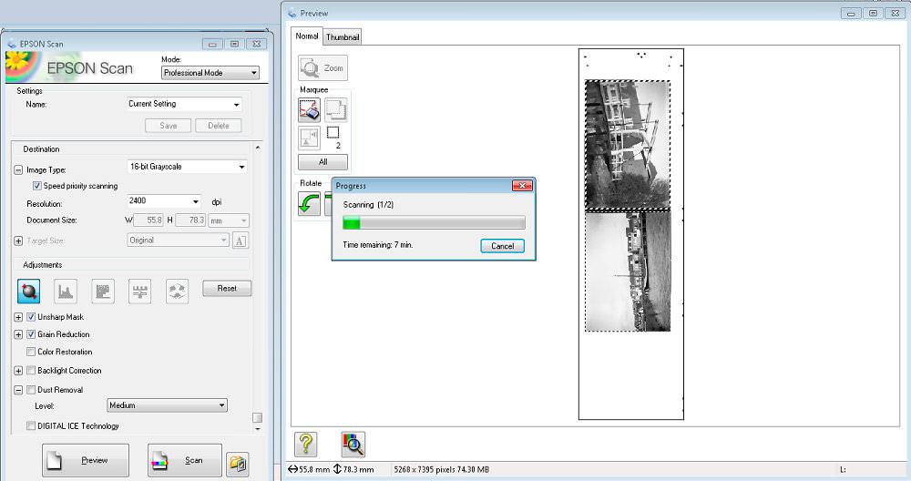 Medium Format Scan